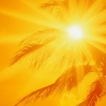 ضد آفتاب گیاهی