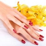 لوسیونی برای زیبایی دستان