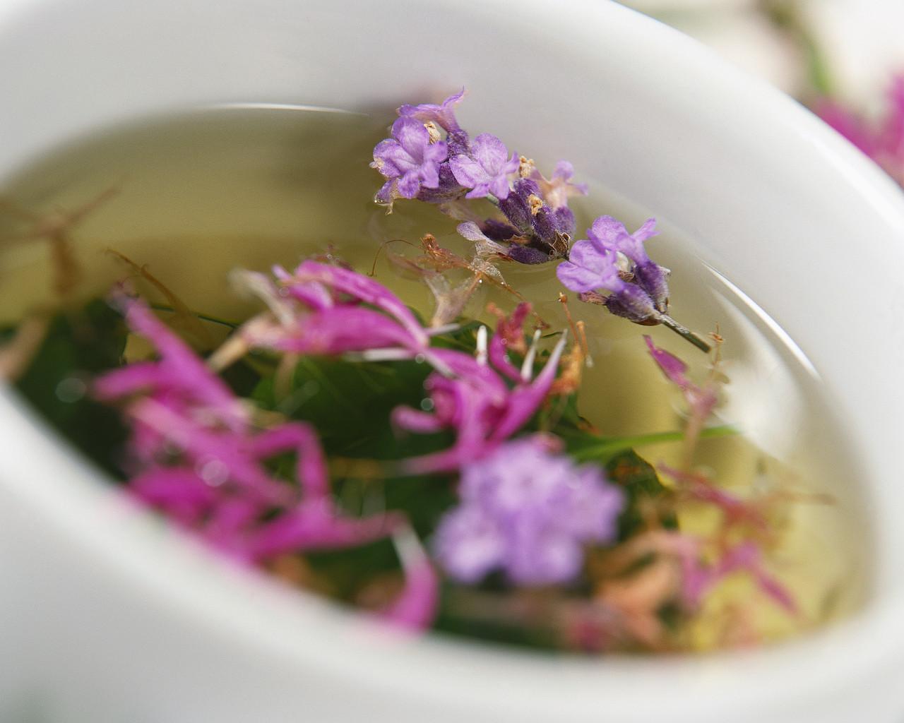 نکاتی مفید در مورد جوشانده های گیاهی