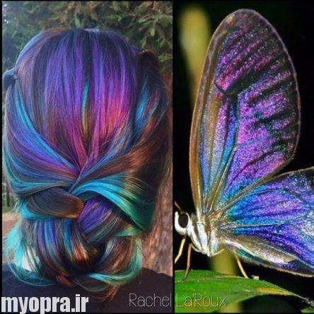 تصاویر مدل هایلایت و لولایت فانتزی 2017 به رنگ بال پروانه