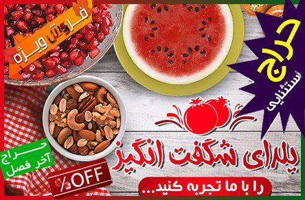 yalda95