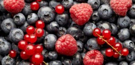 7 ماده غذایی فوق العاده مفید برای تمرکز و هوش برتر